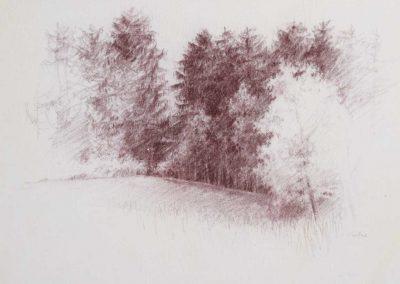 La forêt du Mont 2 - 42 x 31 cm - carré Comté - © Marie-Pierre Lavallard