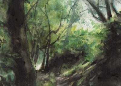 Le vallon de Belle-Ile 1 - 30 x 22 cm - aquarelle - © Marie-Pierre Lavallard