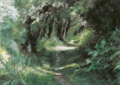 Le vallon de Belle-Ile 2 - 35 x 26 cm - aquarelle - © Marie-Pierre Lavallard