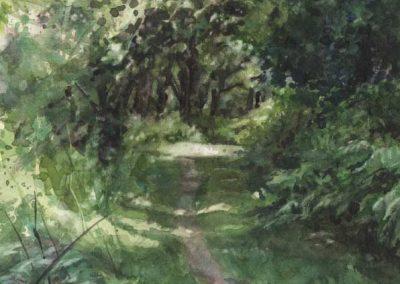 Le vallon de Belle-Ile 5 - 35 x 24 cm - aquarelle - © Marie-Pierre Lavallard