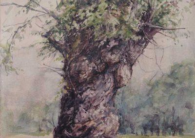 Trogne d'Héry-sur-Alby - 42 x 29,7 cm - encres, aquarelle, crayon - © Marie-Pierre Lavallard