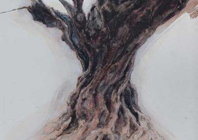 Olivier, noir sous la pluie 2 - 42 x 29 cm - crayon, encres, aquarelle, rehaut de blanc - © Marie-Pierre Lavallard